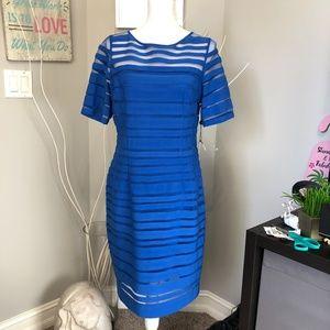 NWT Adrianna Papell Royal Blue Sheer Mesh Stripe